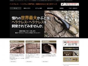 ヘラクレス・ヘラクレス専門店|福岡のかぶと虫工房サンズ